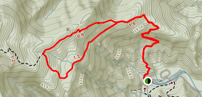 Mount Mitchell and Higgins Bald Loop Trail Map