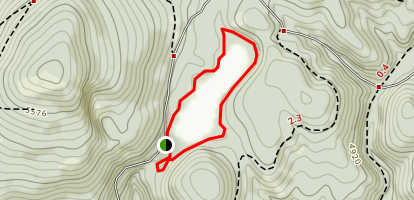 Magone Lake Trail Map