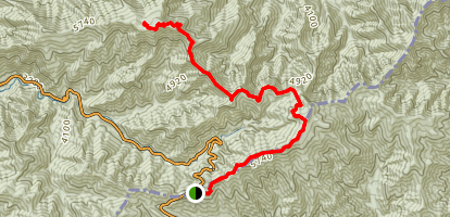 Mount LeConte via Newfound Gap Map