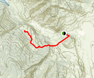 Grizzly Lake Trail Map