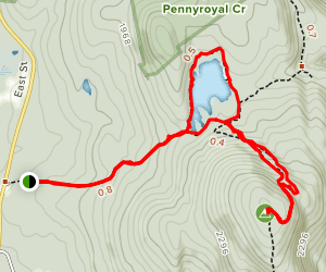 Guilder Pond and Mount Washington Lookout Trail Map