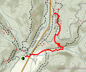 Cathedral Tree Trail Map