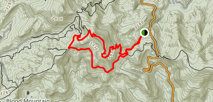 Blood Mountain and Freeman Loop Trail Map