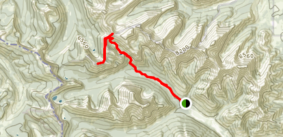 Newman Peak and Avion Ridge Trail Map