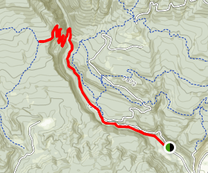 Colorado Trail to Gudy's Map