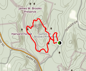 Harvard Forest Trail Map