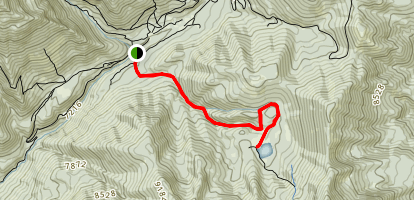 Shaffer Fork - Forest Lake Map