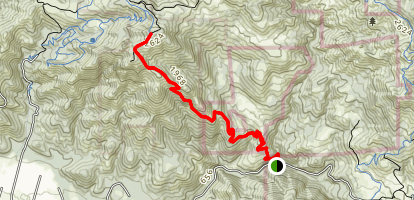 Goodspeed-Nattkemper Trail to Mount Hood Peak Map