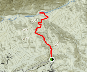 Beacroft Trail Map