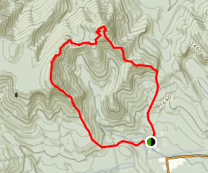 Mount Whiteface and Mount Passaconaway Loop Trail Map