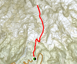 Camp Muir Route Via Skyline Trail Map