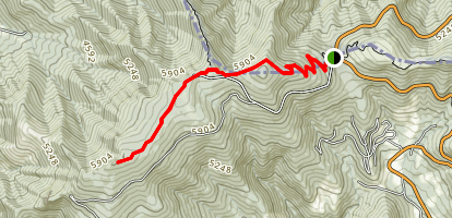 Appalachian Trail: Carvers Gap to Roan High Bluff Map