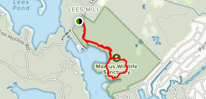 The Loon Center at the Markus Wildlife Sanctuary Map