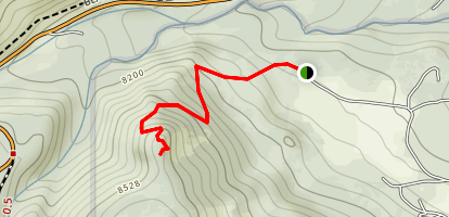 Bible Point Map