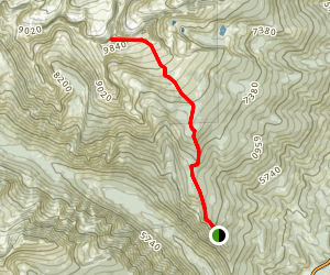 Trapper Peak Trail Map