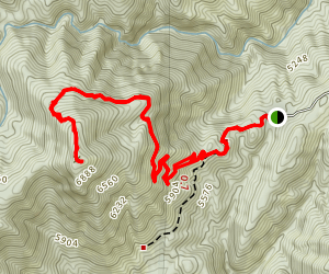 Mount Peeley Trail Map