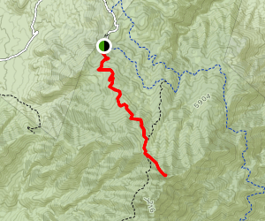 Browns Peak via Brown's Trail Map