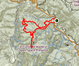Tafoni and Fir Trail  Map