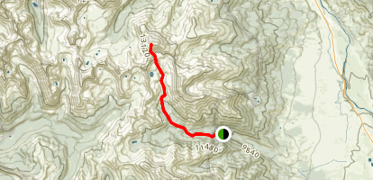 Mount Harvard Trail Map