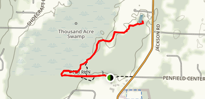 Thousand Acre Swamp Trail Map