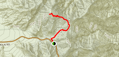Wildrose Peak Trail Map