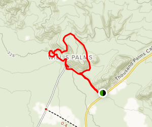 Willis Palms and West Mesa Trail Map