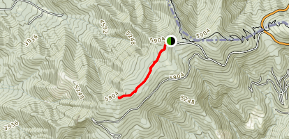 Cloudland Trail Map