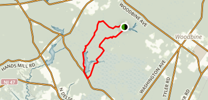 East Creek Pond and Lake Nummy Map