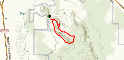 Mount Stapylton Loop Trail Map