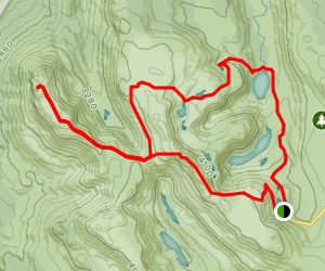 Mount Field National Park Loop Map