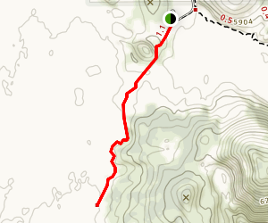 Tree Molds Trail Map