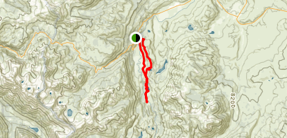 Leavitt Meadows to Millie, Secret, Roosevelt & Lane Lakes Map