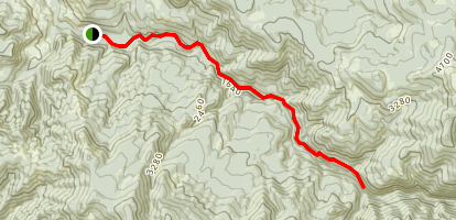 Brice Creek Trail Map