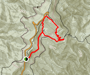 Commissary Trail Map