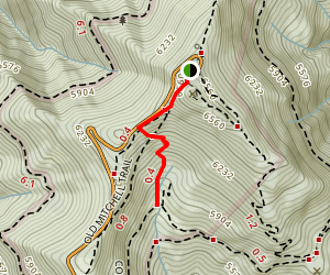 Camp Alice Trail Map