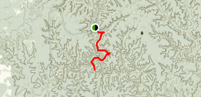 Sipsey Trail 206 to Needles Eye Map
