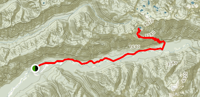 Hoh Lake and River Trails Map