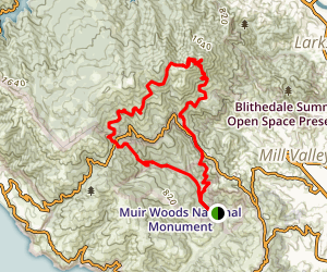 Muir Woods to Mount Tam East Peak Loop Map