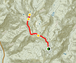 Noble Knob Trail Map
