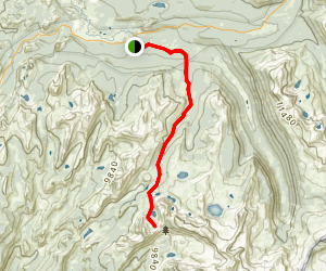 Vogelsang Lake and Volesang Pass Trail Map