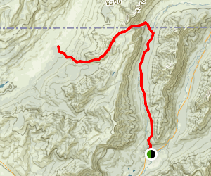 Pebble Creek Trail To Bliss Pass Map