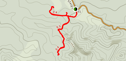 Waipoua Forest Trails Map