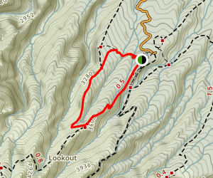 Veronica Loop Track Map