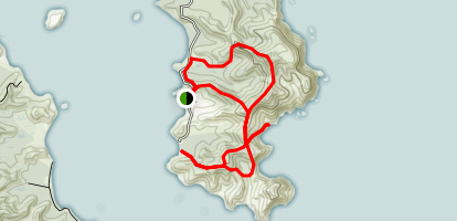 Whangaruru North Head Loop Map
