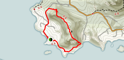 Mount Aubrey/Reotahi Shoreline Loop Map