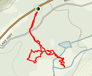 Fairy Forest Trail Map