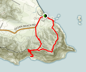 Bream Headland Loop Track Map
