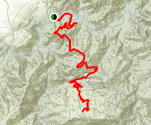 Goat Hill and Bush Road Track Map