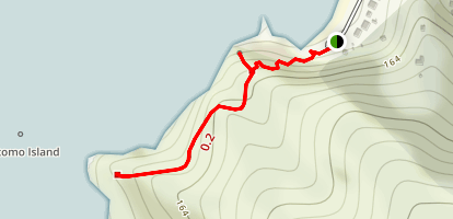 Tasman Lookout Track Map