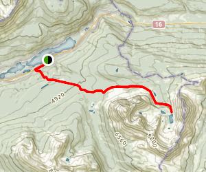 Mount Fitzwilliam Trail Map